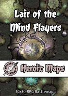 Heroic Maps - Lair of the Mind Flayers