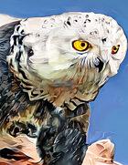 Octavirate Stock Collection 23: Owlbears