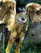 Octavirate Stock Collection 24: Stolas / Owls