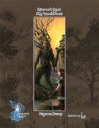 SQ2: Sojourner's Quest, Wynold Forest; The Swamp of Nagarren