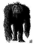 Yeti 1
