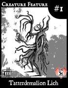 Creature Feature #1 Tatterdemalion Lich (5e)