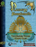 Player Paraphernalia #57 The Merciless Warden (hybrid class)