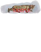 Sneaking Cat: Stock Art