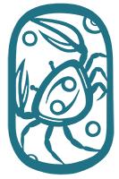 Blue Crab Illustrations
