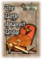 The Battle of Borost Bridge