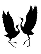 Courting Cranes Publishing