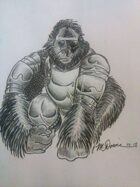 Advanced Ape Class