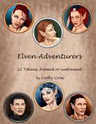 Elven Adventurers