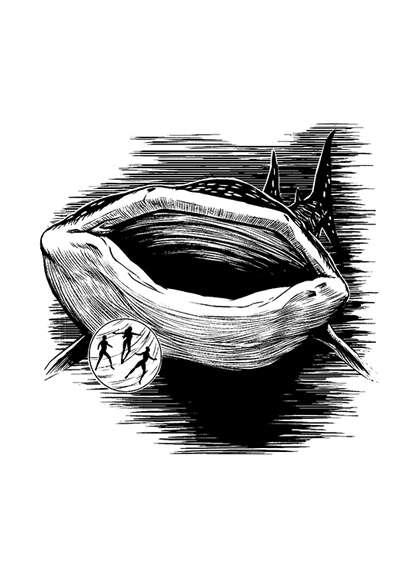 Filler spot - whaleshark - RPG Stock Art