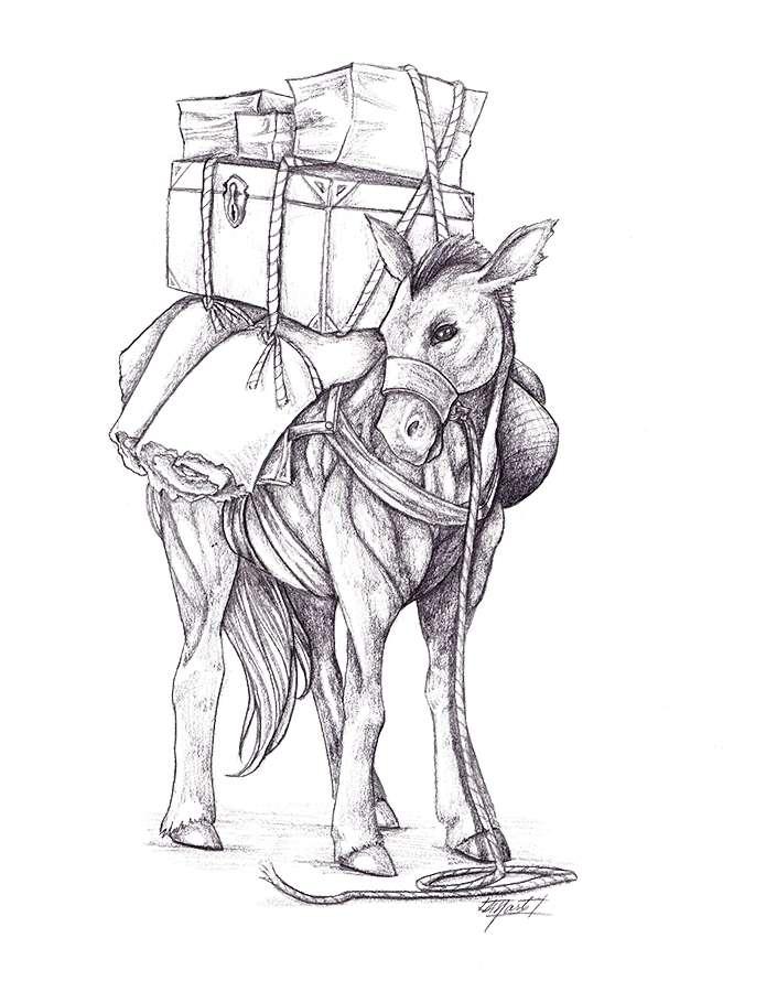 THC Stock Art: Pack Horse (Horse #1) - Tortoise & Hare ...