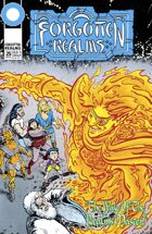Dungeons & Dragons: Forgotten Realms #25