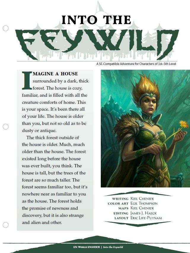 Cover of EN5ider #100 - Into the Feywild
