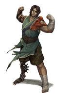 Vagelio Kaliva - Stock character digital Illustration - Half elf monk