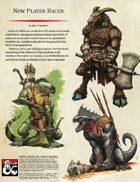 New Player Races (Lizardfolk & Ibixian)