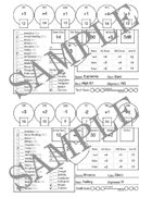 5x7 Fillable Condensed Character Sheet 5e