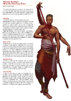 Way of the Four Fists (Monastic Tradition)