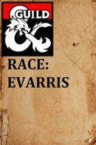 Evarris Race 1.1