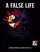 A False Life