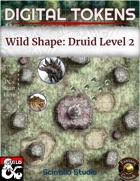 Digital Tokens: Wild Shape, level 2