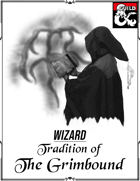 Grimbound Wizard