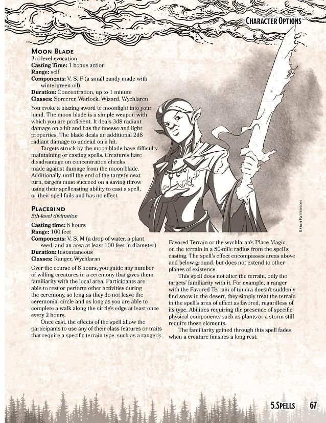 Rashemen-pg67-smaller.jpg