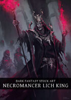 Necromancer Lich Stock Art