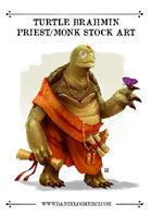 Oriental Turtle Brahmin Monk Stock Art