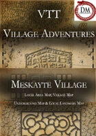 VTT Village Encounters -  Meskayte Village