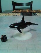 Killer Whale Miniature!