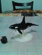 Killer Whale Miniature!